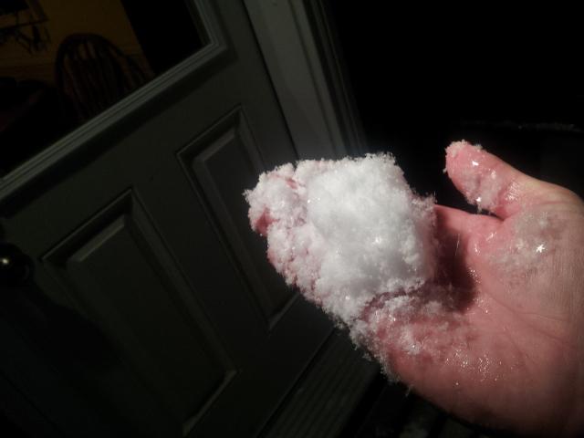 ウィニペグの雪