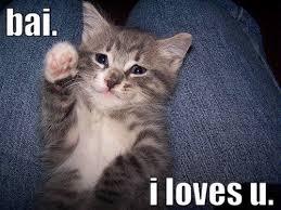 cat_goodbye